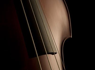 contrebasse